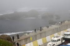 Karadeniz'de son dakika gemi kazası!