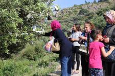 Manisa'da Spil Dağı'nda Hıdırellez kuyruğu