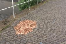 Sosyal deney için sokağa para bıraktılar sonu daha bomba