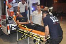 Arılar Bursa'da iki kişiyi hastanelik etti