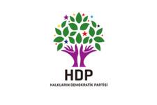 HDP'li vekile hapis şoku