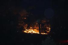 İzmir'de orman yangını 5 saat sonra kontrol altına alındı