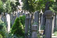 Eyüp Sultan Mezarlığı bakım çalışmasına alınıyor