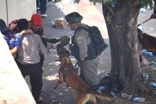 İsrail polisi namaz sonrası cemaatten 13 kişiYİ yaraladı