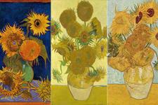 Facebook'tan Van Gogh'un 'Ayçiçekleri' serisine özel sergi