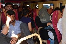 Edirne'de yüzlerce kaçak ve sığınmacı yakalandı!