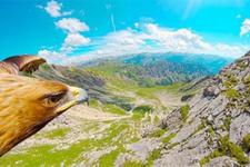 Bir kartalın gözünden Nebelhorn Zirvesi
