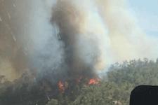 Muğla'da ormanlık alan yanıyor dehşet görüntülere bakın