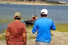 Bolu'da en büyük sazan balığı yakalama yarışması