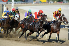 Bursa TJK at yarışı 22 Eylül 2017 altılı ganyan sonuçları