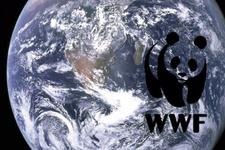 Kuzey Kore bombasının radyasyonu tüm kıtalara ulaşacak