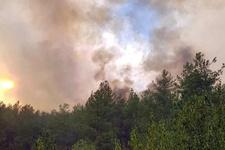 Mahalle boşaltıldı: Yangın kontrol altına alınamıyor!