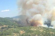 Zeytinköy'deki orman yangını evlere sıçradı mahalle boşaltılıyor