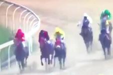 İnanılmaz kaza: Japonya'da bir garip at yarışı!