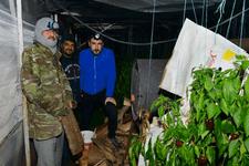 Don nedeniyle Antalya'da seracılar nöbete başladı
