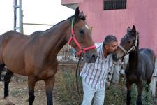 800 bin TL'lik atını buldu öpmeye doyamadı