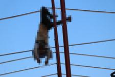 Korkunç ölüm: Akıma kapılan işçi tellerde asılı kaldı!