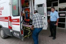 Kilis'te arının saldırdığı kadın hayatını kaybettti