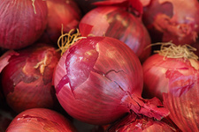 Çiftçi uyardı: Dikkat soğan fiyatları artıracak