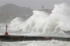 Ada kayboldu! Japon yetkililer harekete geçti