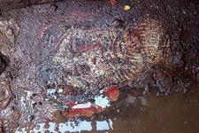 İznik'te bir antik mozaik, çöp konteynerinin altında kaldı