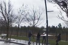 Ağaçta mahsur kalan kediyi çarşafla kurtardılar