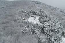 Kış fena bastırdı! İşte kar yağışının etkili olduğu iller
