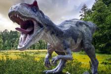 Afrika'da otobüs uzunluğunda dinozor bulundu
