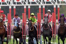 İzmir TJK at yarışı 25 Mart 2018 altılı ganyan sonuçları