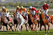Adana TJK at yarışı 25 Mart 2018 altılı ganyan sonuçları