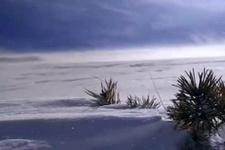 Rüzgarla karın olağanüstü buluşması böyle görüntülendi