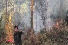 Aydos Ormanları'nda korkutan yangın!