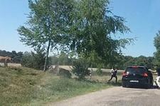 Araçlarından inip çitaları fotoğraflamak isteyen aile kabusu yaşadı