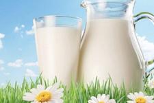 21 Mayıs'ta ne oldu Dünya Süt Günü nedir önemi-tarihi