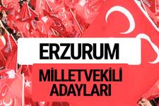 MHP Erzurum milletvekili adayları 2018 YSK kesin listesi
