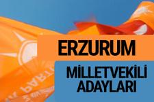 AKP Erzurum milletvekili adayları 2018 YSK AK Parti kesin listesi