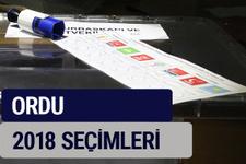 Ordu oy oranları partilerin ittifak oy sonuçları 2018 - Ordu
