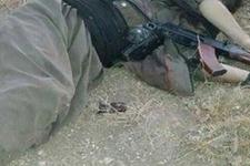 Siirt'te 5 PKK'lı etkisiz hale getirildi