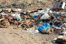 Kurban atıkları çevreye bırakılınca mahalleli isyan etti