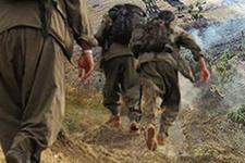 Şırnak'ta 5 terörist etkisiz hale getirdi