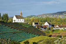 İsviçre'nin Rheinau köyünde herkese ayda 16 bin TL maaş