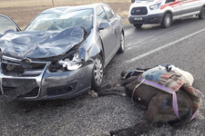 Kırşehir'de otomobil eşeğe çarptı! 3 kişi yaralandı