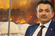 Bakan Pakdemirli'den flaş yangın açıklaması