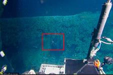 Okyanusun altında ortaya çıktı! Bilim insanları şokta...