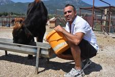 Rize'den Trabzon'a yüzmüştü! Firari boğa sahibi Haluk Levent'le...