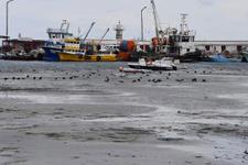 Marmara'da korkutan görüntü deniz 20 metre çekildi deprem paniği