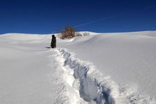 Bingöl'ün Karlıova ilçesinde bir metre kar yağdı okullar 12 gün tatil edildi