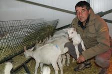 Kravatlı insanlardan bıktı keçi çiftliği kurdu
