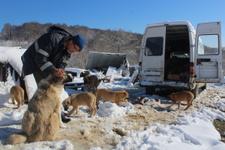 İstanbul'daki dairesini satıp dağ başına yerleşti parayı hayvanlara yediriyor