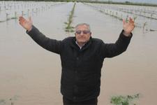 Adana felaketi yaşıyor! Çiftçilerin durumu çok vahim